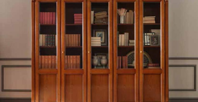 Библиотека 5-ти дверная. 250х42х214